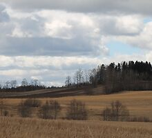 Farm land. Spring time. Ås, akershus, Norway. by UpNorthPhoto