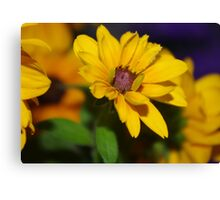 Flower ... A  F L O W E R Canvas Print