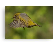 Flight 207 - you are cleared to land on runway 2......! Canvas Print