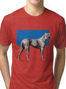 IP Pitbull Tri-blend T-Shirt