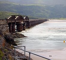 Barmouth Bridge by Paul  Green