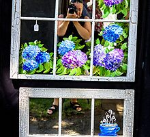 Self Portrait at Park Avenue Festival by Mikell Herrick