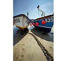 Sea Buddies Photographic Print
