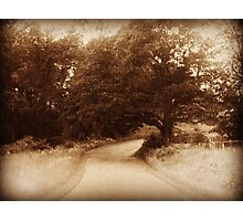 Country Lane old looking photograph vintage rustic art Photographic Print