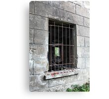 Security Bar Canvas Print