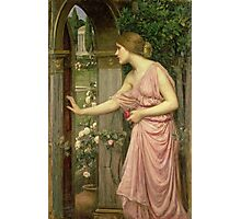 Psyche entering Cupid's Garden Photographic Print