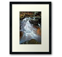 In the Middle of the Woods Runs this Streams Framed Print