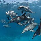 Wild-wild dolphins by Natalia Pryanishnikova