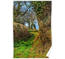 A Norfolk Country Lane Poster