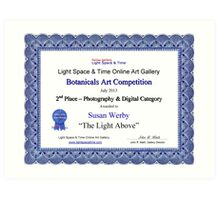 """2nd Place Photography Category-Botanicals Competition-""""The Light Above"""" Art Print"""