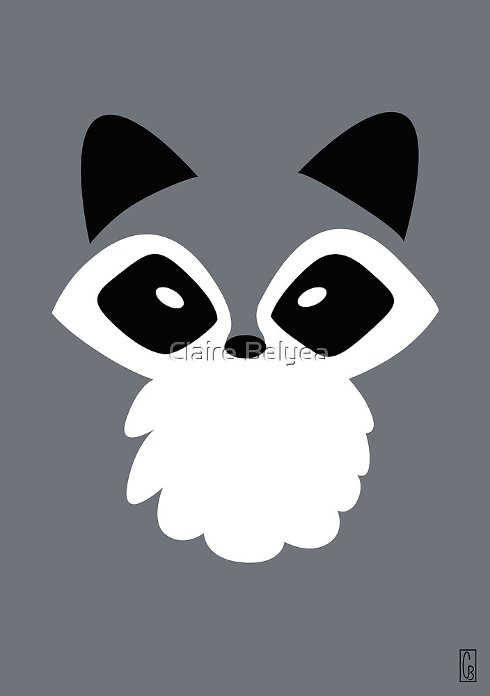 Raccoon by Claire Belyea
