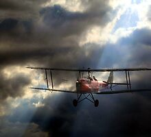 Tiger Moth in a stormy sky by larry flewers