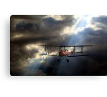 Tiger Moth in a stormy sky Canvas Print