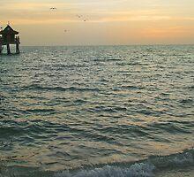 Naples Pier at Dusk by John  Kapusta