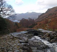 The Lake District, red autumn colours by Grace Johnson