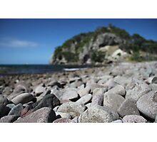 DimSum Island Photographic Print