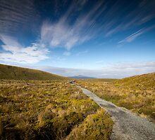 Tongariro Crossing - Path by Brian Lai