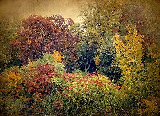 Autumn Tapestry by Jessica Jenney