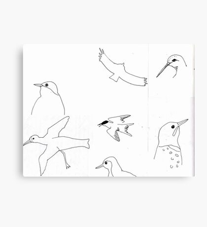California Bird study 9 Canvas Print