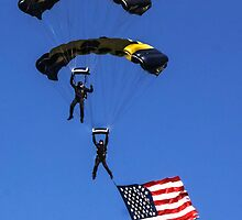 Naval Aviation Parachutists  by heatherfriedman