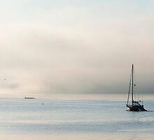Morning Mist by DawsonImages