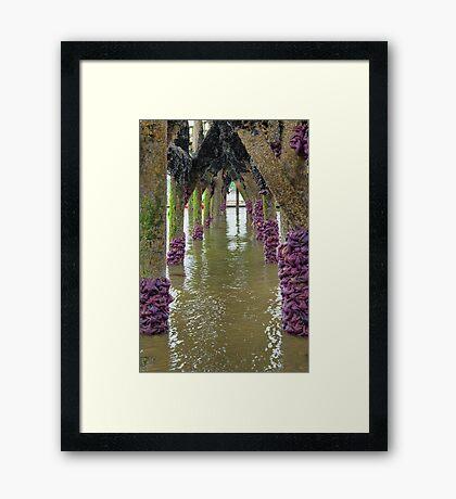 Starfish Archway Framed Print