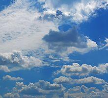 ©HCS Cumulus Humilis In Blue X by OmarHernandez