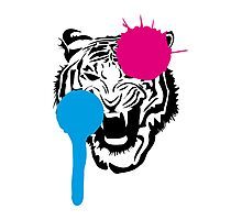 Angry Tiger Graffiti Photographic Print