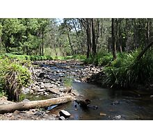Tallebudgera Creek, Tallebudgera Valley, SE Qld., Australia Photographic Print