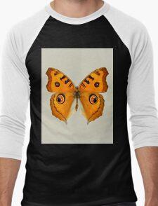 Meadow Argus Butterfly Men's Baseball ¾ T-Shirt