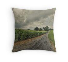 Virginia Farmhouse Throw Pillow