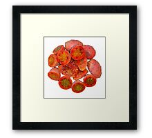 Tropical Red Prickly Pear Fruit  Framed Print