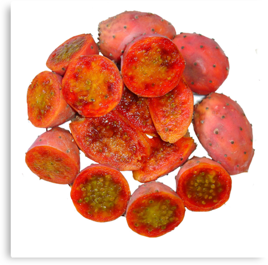 Tropical Red Prickly Pear Fruit  by taiche