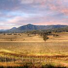 Denman Winery II - Near Muswellbrook, NSW by Mark Richards