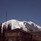 Mount Rainier National Park by Loisb