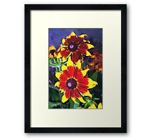 Very bright daisies Framed Print