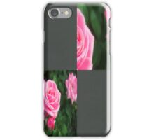 Pink Roses in Anzures 1 Blank Q6F0 iPhone Case/Skin