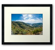 Vineyars in Douro Valley Framed Print