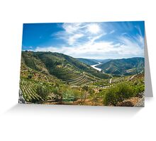 Vineyars in Douro Valley Greeting Card