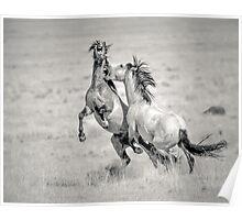 Duel on the Desert Poster