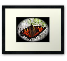 FURRY NICE!     Framed Print