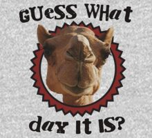 Hump Day Camel - Guess What Day it Is - Wednesday is Hump Day - Parody Camel by traciv
