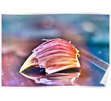 Garlic Micro Photographyc Poster