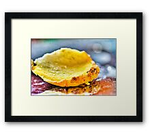 Ginger Micro Photography Framed Print