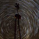 Emu - Star Trail - Lightning Ridge - NSW by Frank Moroni