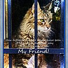 My Friend by Terri Chandler
