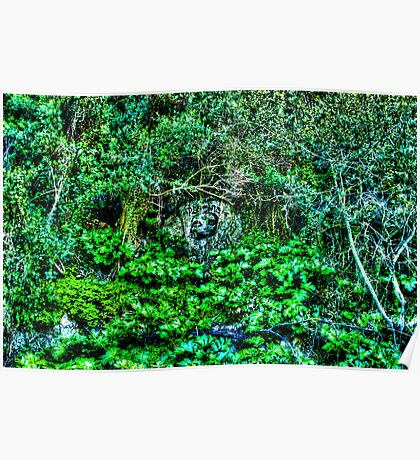Growing Nature Around the Gibraltar Bunkers Poster