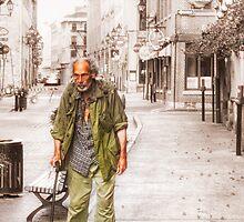 The Traveller by faczen