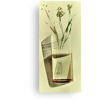 Half still life Canvas Print