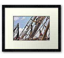 Long neck Framed Print